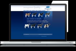 KingStreet-SIres-website-design-2